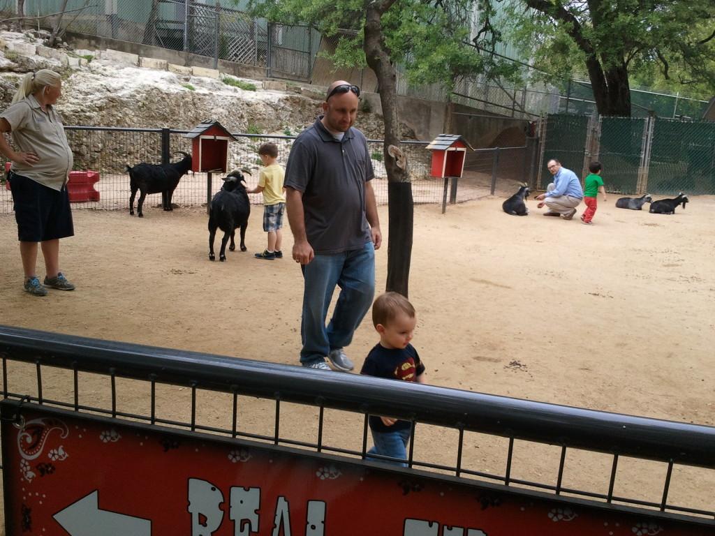 In the petting zoo